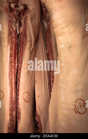 Close up pig Carcasses hanging in Butchers delivery van - Stock Photo