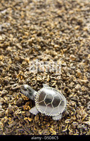 Green tea background with stone turtle close up. - Stock Photo