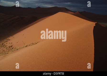Dune 45. Sossusvlei. Namib Naukluft National Park. Namibia - Stock Photo