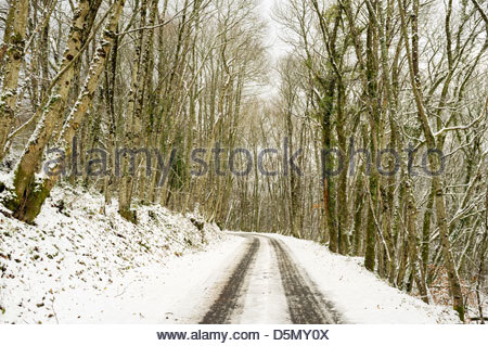 A small road through snow-covered forest, La Creuse, Limousin, France - Stock Photo