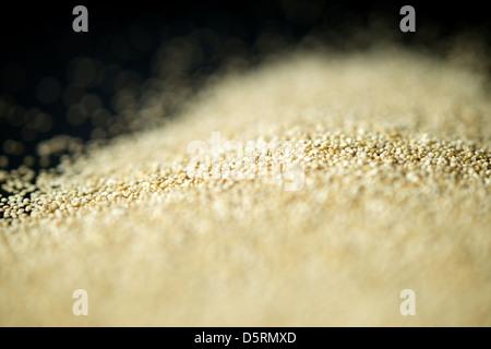 Quinoa seeds shallow focus close up. - Stock Photo
