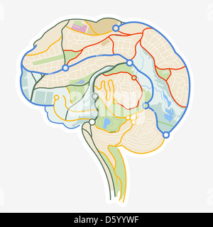 Brain Map. An illustration of a human brain made up from a map. - Stock Photo