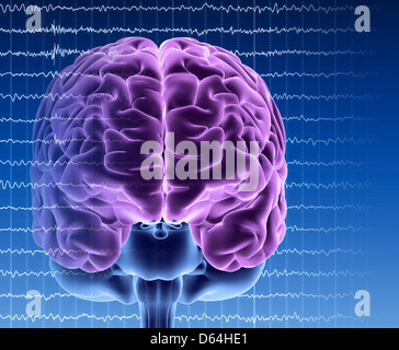 Brain activity, artwork - Stock Photo