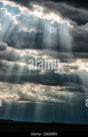 Beams of sunlight coming through storm clouds in the Masai Mara, Kenya, Africa - Stock Photo