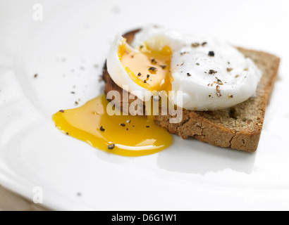 Poached Egg on toast - Stock Photo