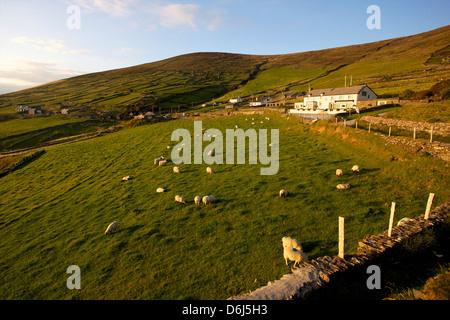 Along the Dingle Peninsula road, County Kerry, Munster, Republic of Ireland, Europe - Stock Photo