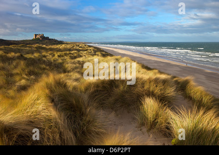 Marram grass, beach and surf with Bamburgh Castle in distance, Bamburgh, Northumberland, England, United Kingdom, - Stock Photo