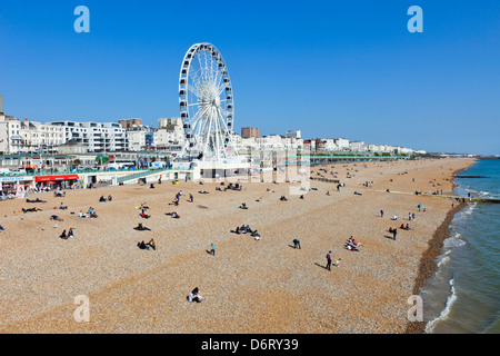 UK, England, East Sussex, Brighton, Brighton Beach - Stock Photo