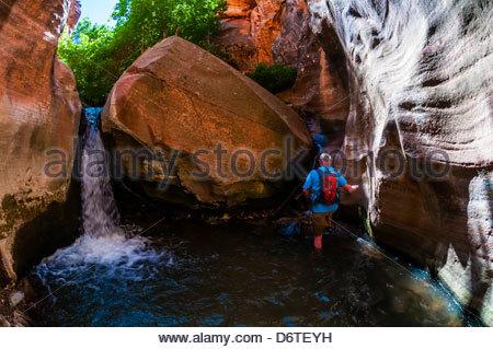 Hikers in the slot canyon, Kanarra Creek Falls, near Cedar City, Utah USA. - Stock Photo