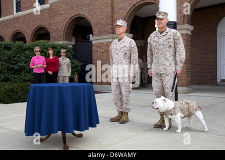 Commandant of the US Marine Corps Gen. James F. Amos and the 17th Sergeant Major of the Marine Corps, Sgt. Maj. - Stock Photo
