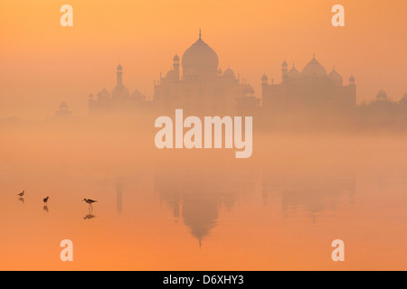 Skyline of Taj Mahal,  Agra, Uttar Pradesh, India - Stock Photo