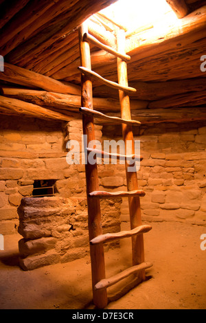 ladder at Spruce Tree House, cliff dwelling of pre-Columbian Anasazi indians and UNESCO World Heritage site, Mesa - Stock Photo