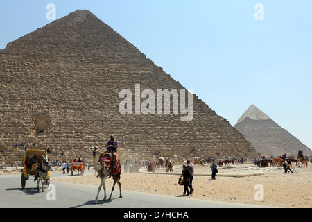 Camel drivers and tourists in front of the Pyramids, Giza, Cairo, Egypt North Africa - Stock Photo