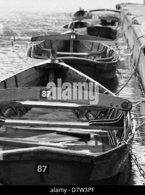 Row boats mored up and floating in a line. - Stock Photo
