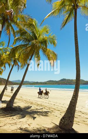Horse riders on beautiful palm fringed Playa Carrillo, Carrillo, near Samara, Guanacaste Province, Nicoya Peninsula, - Stock Photo