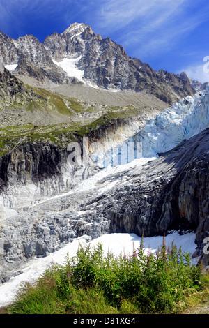 The Argentière Glacier and the Aiguille du Chardonnet ( 3824 m ) Argentiere, Chamonix Valley, France - Stock Photo
