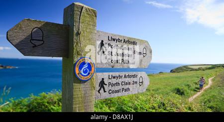 Coast path Caerfai Bay St Davids Pembrokeshire Wales - Stock Photo
