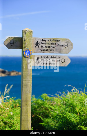 Coast path Caerfai Bay St Davids Pembrokeshire Wales - Stock Photo