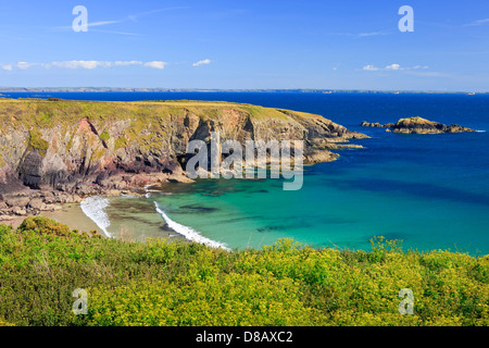 Caerfai Bay St Davids Pembrokeshire Wales - Stock Photo