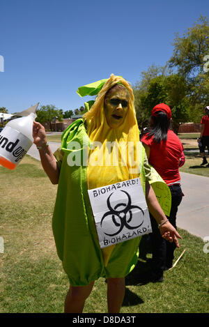 Tuscon, Arizona, USA. 25th May, 2013. About 1,000 protesters participated in a march organized by Monsanto Free - Stock Photo