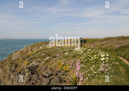 Walkers on the Pembrokeshire coast path near St Justinians in spring Wales Cymru UK GB - Stock Photo