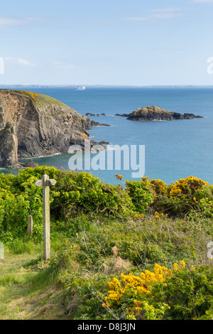 Coast Path Wales Caerfai bay St Brides Bay in the Pembrokeshire National Park - Stock Photo