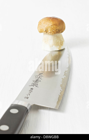 Cep on the end of a Japanese knife - Stock Photo