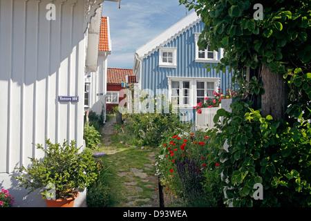 Garden path between houses - Stock Photo