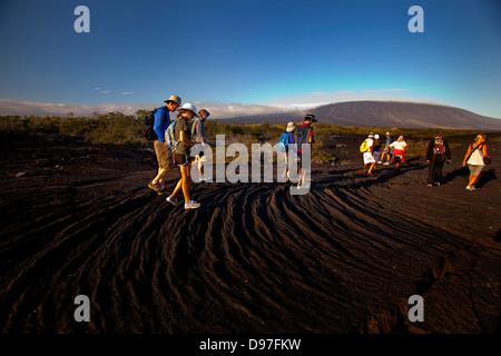 Tourists walking on the lava flow at Punta Espinozo, Fernandina Island, Galapagos - Stock Photo