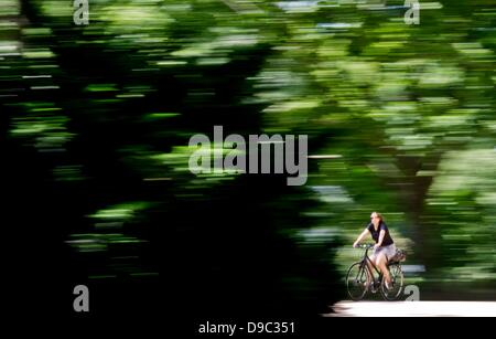 A woman rides on her bicycle through the Tiergarten park in Berlin, Germany, 17 June 2013. Photo: Nicolas Armer - Stock Photo