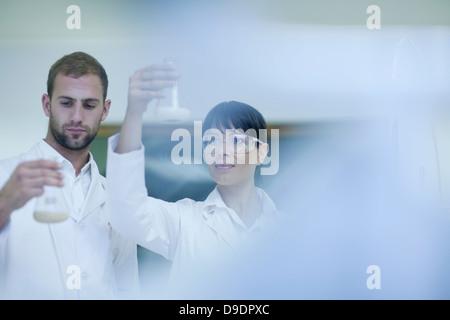 Laboratory technicians checking contents in laboratory beakers - Stock Photo