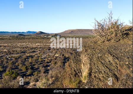 Karoo vegetation and farm, Prince Albert, Western Cape, South Africa - Stock Photo