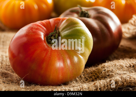 Fresh Organic Ripe Heirloom Tomatoes in a variety of colors - Stock Photo