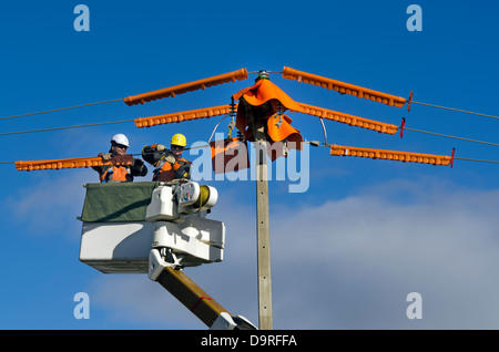 Electrical workers repairs power pole - Stock Photo