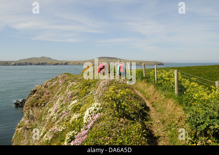 Walkers on the Pembrokeshire Coast path in spring near St Justinians looking towards Ramsey Island Pembrokeshire - Stock Photo