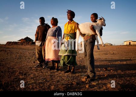 Young boy carries his goat home in rural Transkei, South Africa - Stock Photo