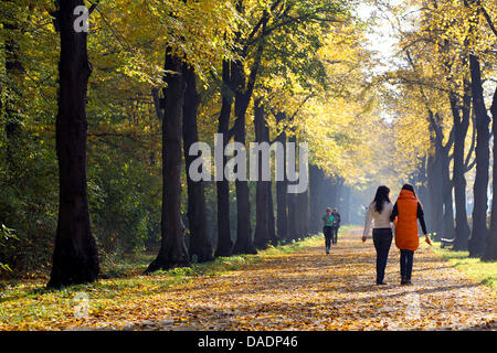 Several people stroll through a sun-drenched alley inside the Tiergarten inBerlin, Germany, 01 November 2011. According - Stock Photo