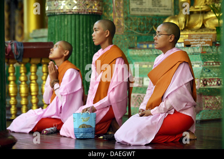 three Buddhistic nuns sitting praying at the Shwedagon Pagoda, the most important sacral building and religious - Stock Photo