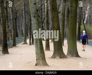 A young woman jogs along an alley way in the Tierpark in Berlin, Germany, 31 March 2011. Photo: Stephanie Pilick - Stock Photo