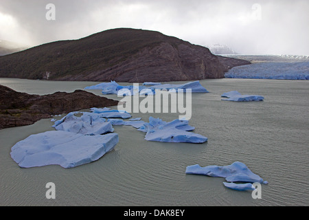 Grey Glacier and Grey Lake with icebergs, Chile, Patagonia, Torres del Paine National Park - Stock Photo