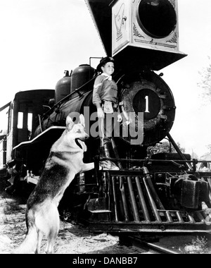 THE ADVENTURES OF RIN TIN TIN (TV) (1954 - 1959) LEE AAKER, AORT 001 MOVIESTORE COLLECTION LTD - Stock Photo