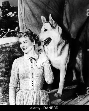 THE ADVENTURES OF RIN TIN TIN (TV) (1954 - 1959) NAN LESLIE, AORT 003 MOVIESTORE COLLECTION LTD - Stock Photo