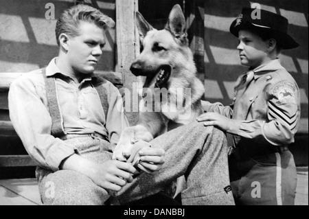 THE ADVENTURES OF RIN TIN TIN (TV) (1954 - 1959) SCOTT WILDER, LEE AAKER, AORT 005 MOVIESTORE COLLECTION LTD - Stock Photo