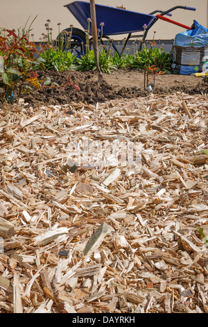 Wood chip as a mulch in the garden - Stock Photo