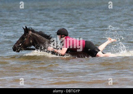 HORSES AND SOLDIERS OF THE HOUSEHOLD CAVALRY (LIFEGUARDS)  IN THE SEA  AT HOLKHAM BEACH ON THE NORTH NORFOLK COAST - Stock Photo