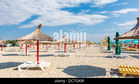 Row and straw umbrellas and sunbeds on a sandy beach - Stock Photo