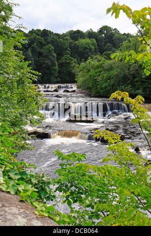 Aysgarth Upper Falls,Wensleydale, North Yorkshire, Yorkshire Dales National Park, England, UK. - Stock Photo