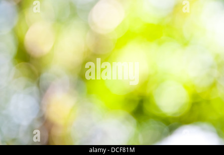 The abstract background of natural light bokeh - Stock Photo