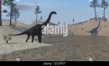 Large Brachiosaurus roaming the edge of a bay. - Stock Photo