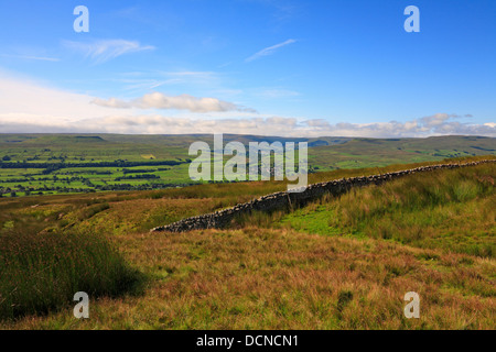 Askrigg Common towards Bainbridge, Addlebrough and Raydale in Wensleydale, North Yorkshire, Yorkshire Dales National - Stock Photo